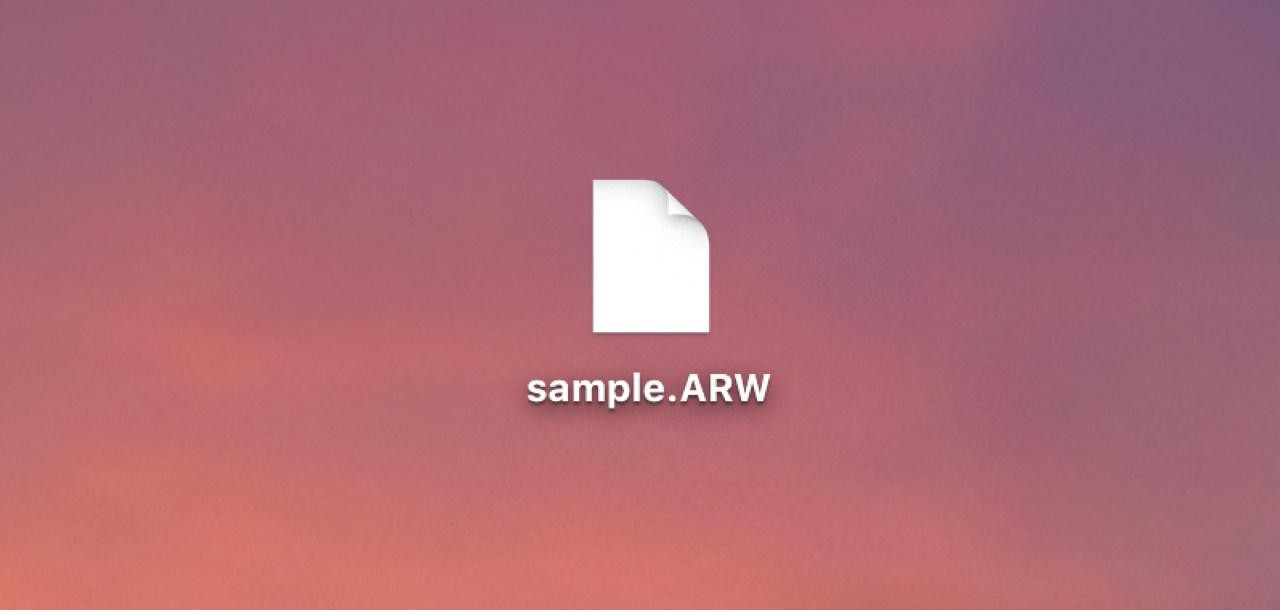 ChromeブラウザであればRAWのままダウンロード可能